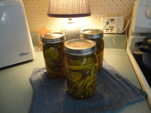 Bread & Butter Pickles, 7-21-12! 001